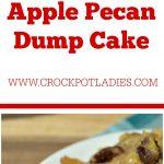 Crock-Pot Apple Pecan Dump Cake