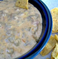 Crock-Pot All In! Hot Dip