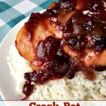 Crock-Pot Cranberry BBQ Chicken