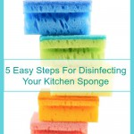 5 Easy Steps For Disinfecting Your Kitchen Sponge