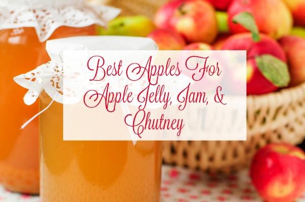 Best Apples For Apple Jelly, Jam, & Chutney