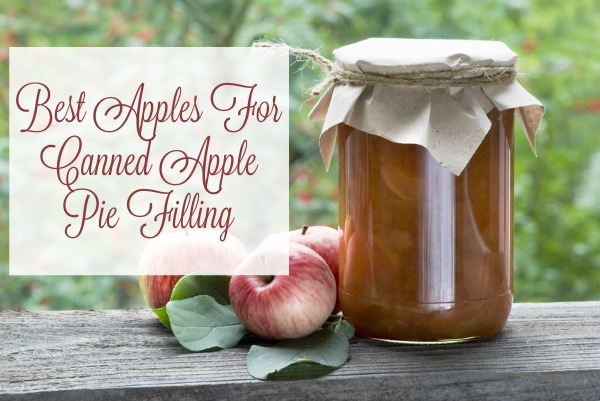 Best Apples For Canned Apple Pie Filling