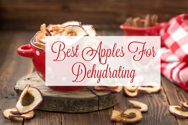 Best Apples For Dehydrating: