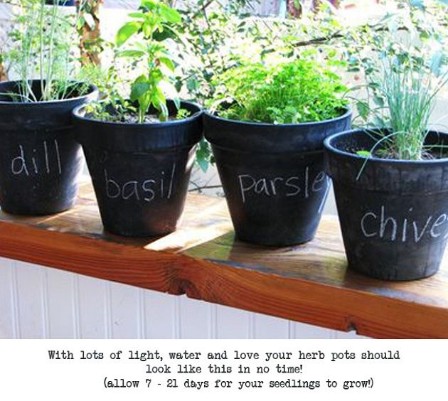 Chalkboard Paint Indoor Herb Garden