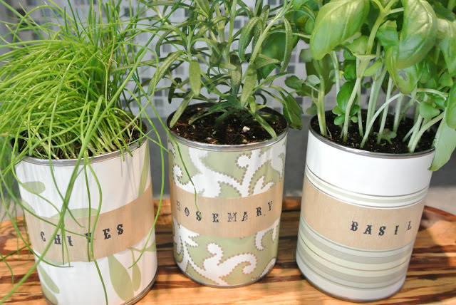 Decorative Paper Tin Can Herb Garden