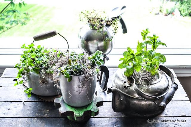 Old Kettle Herb Garden