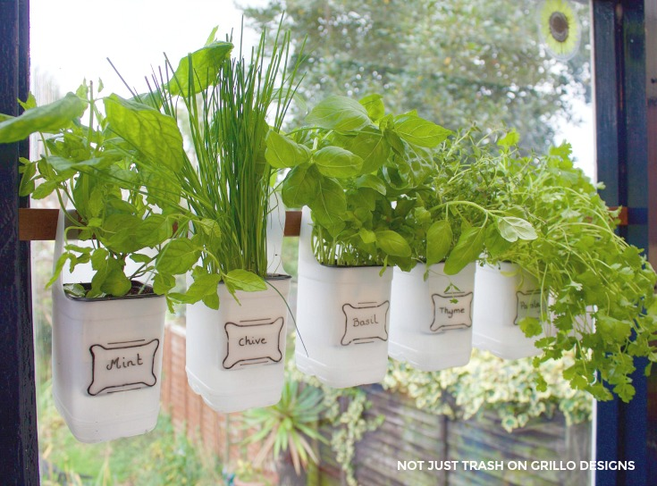 Plastic Bottle Herb Garden