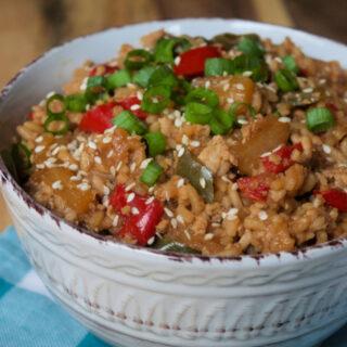 Crock-Pot Teriyaki Chicken And Rice